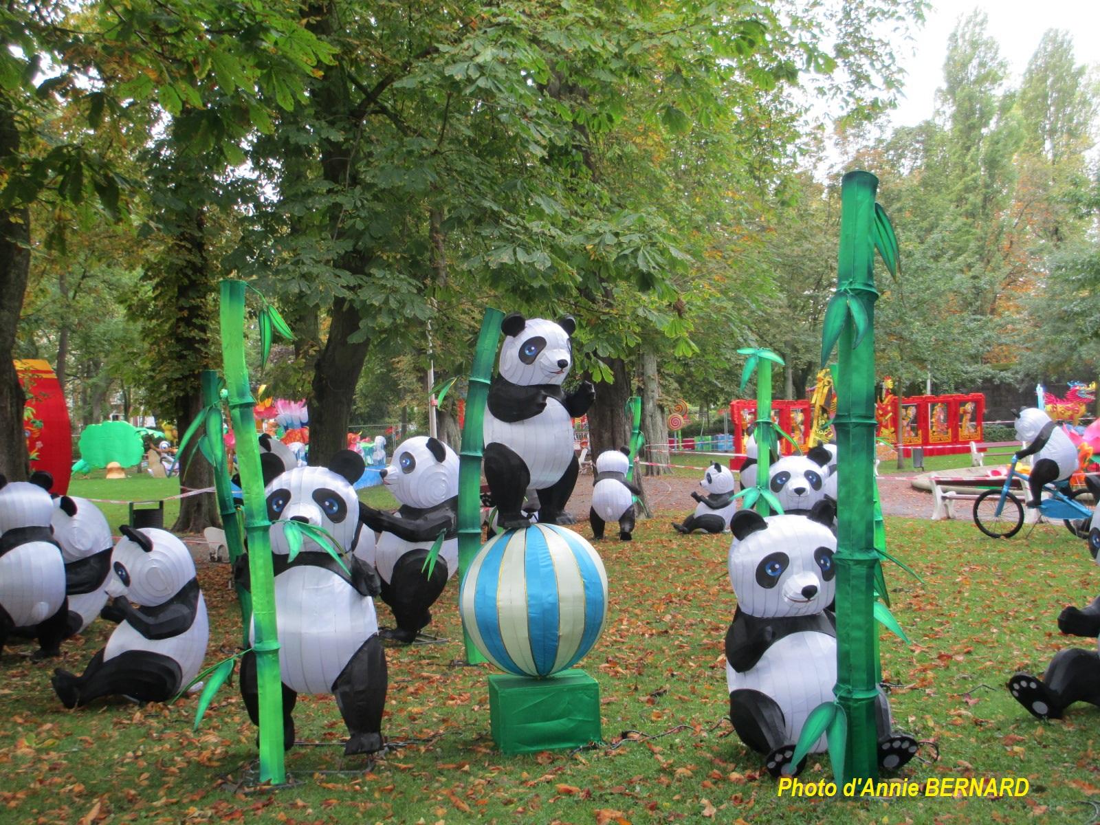 La tribu panda