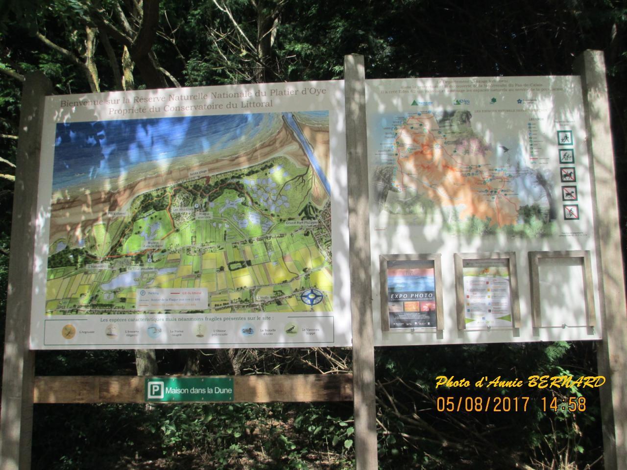 Réserve naturelle à Oye-Plage