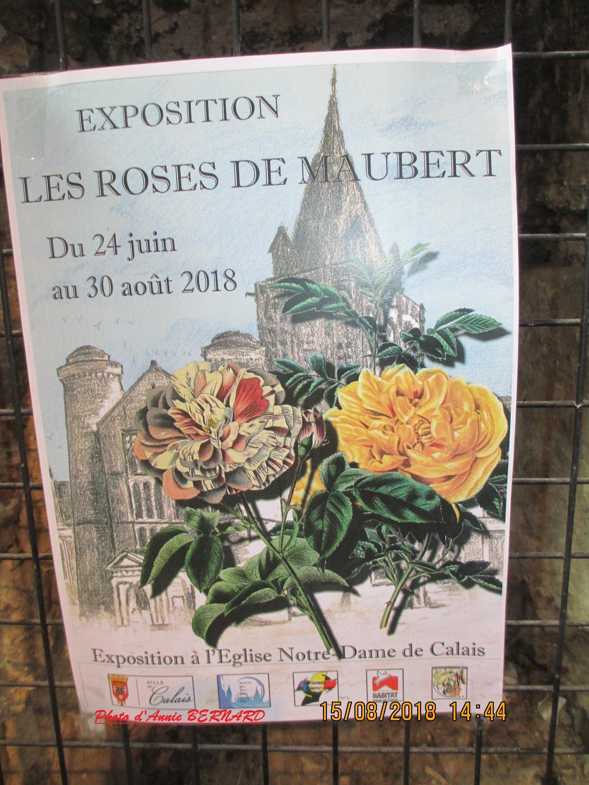 Exposition: Les roses de Maubert