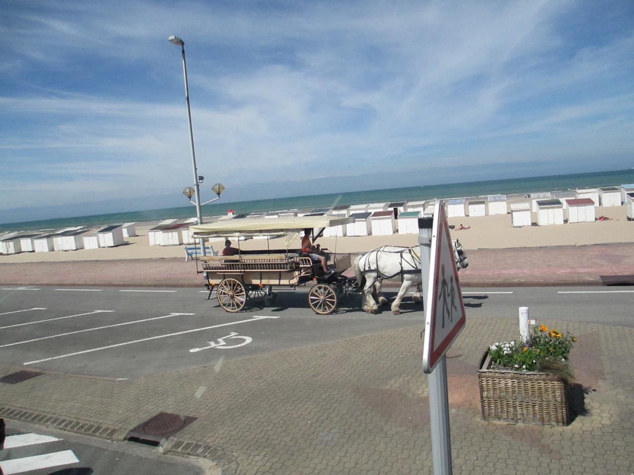Promenade en calèche à la plage de Calais