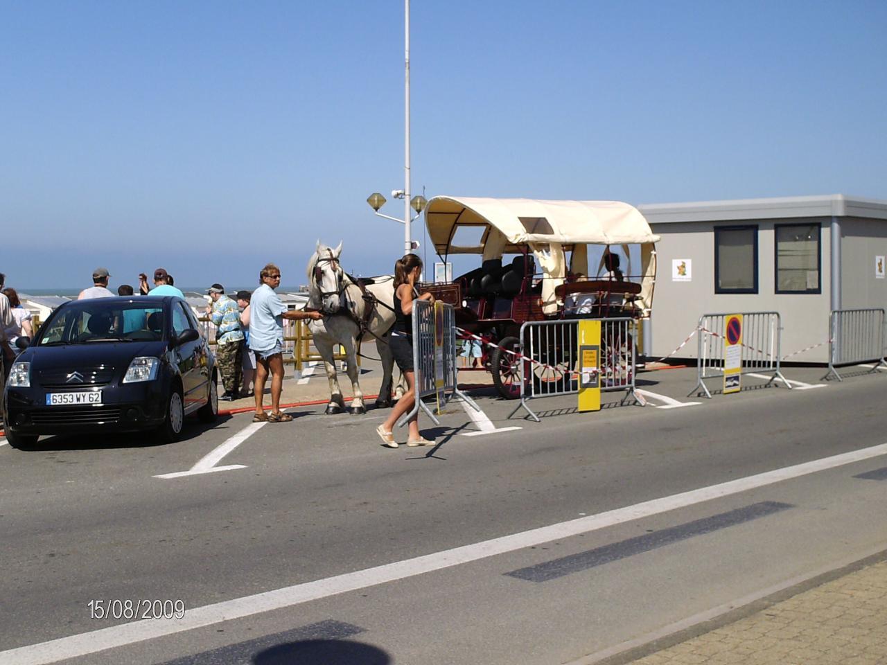 Du monde pour la promenade en calèche à Calais